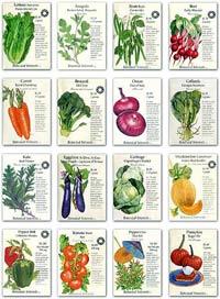 Рейтинг семян