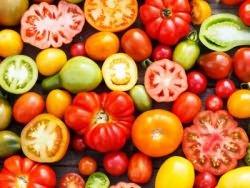 самые вкусные и урожайные томаты