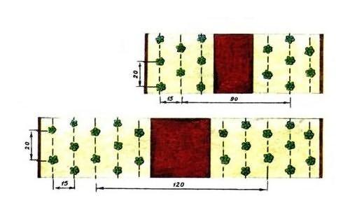 Как правильно посадить клубнику: 4 лучших способа посадить садовую.