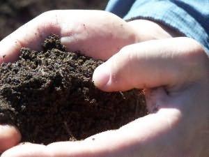 Как удобрить землю